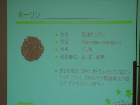 DSC04807ffd.JPG
