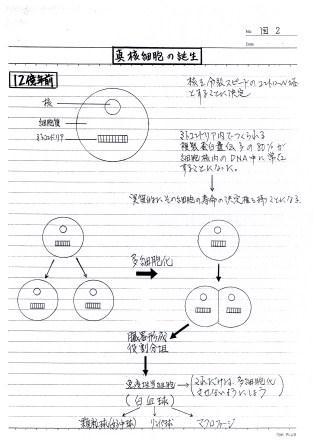 doc20101114181557_001.jpg